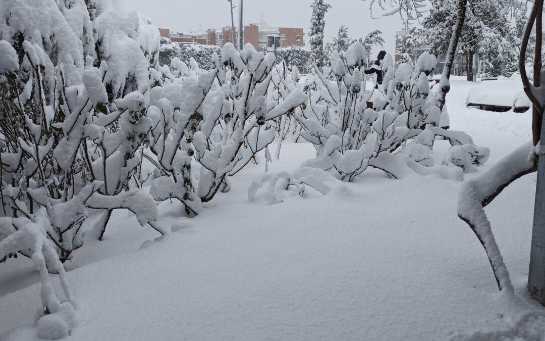 La nieve de Filomena